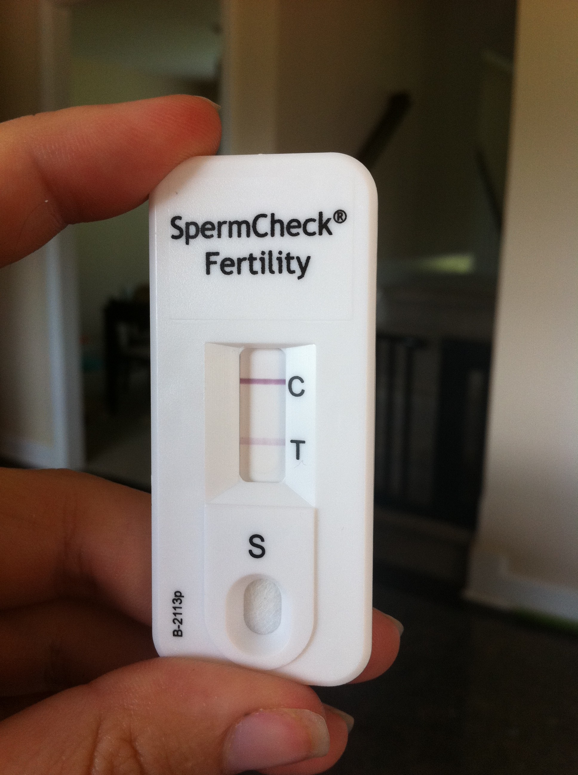 Check count sperm